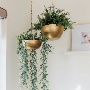 Gold Hanging Baskets